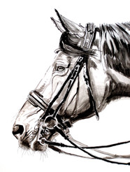 """""""Inked Profile With Double Bridle"""""""