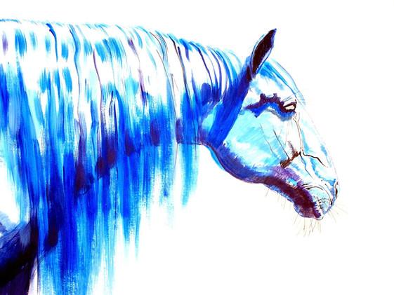 """Omega Blue"""