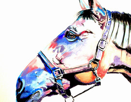 """""""Profile With Halter In Rose Violet And Blue"""""""