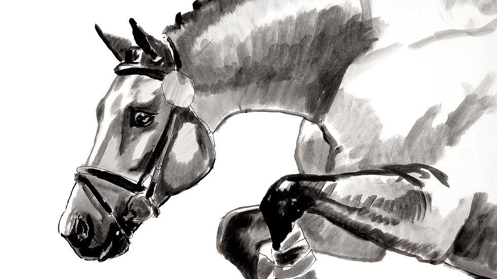 """""""Pony Jump"""""""