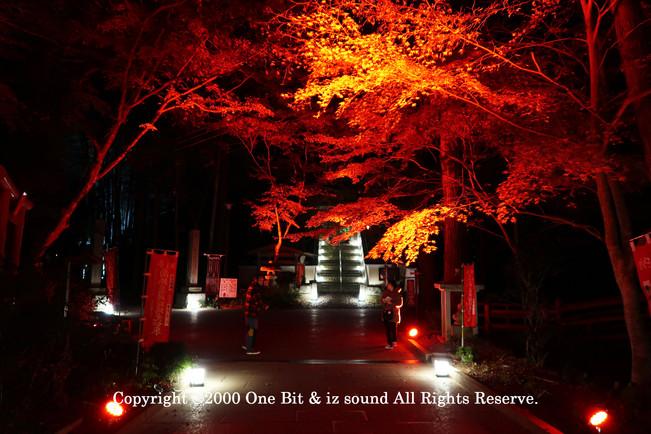 Temple Light-up DesignY3 KITA TOSHI