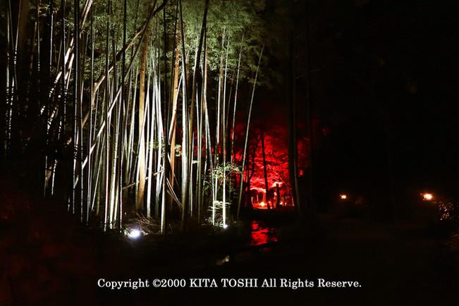 Temple Light-up DesignY10 KITA TOSHI