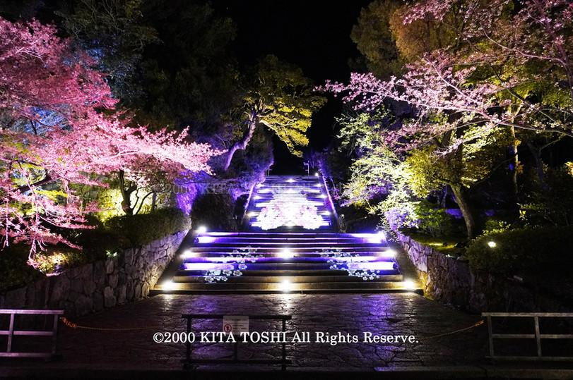 Temple Light-up Designer work Ci21-2 KITA TOSHI