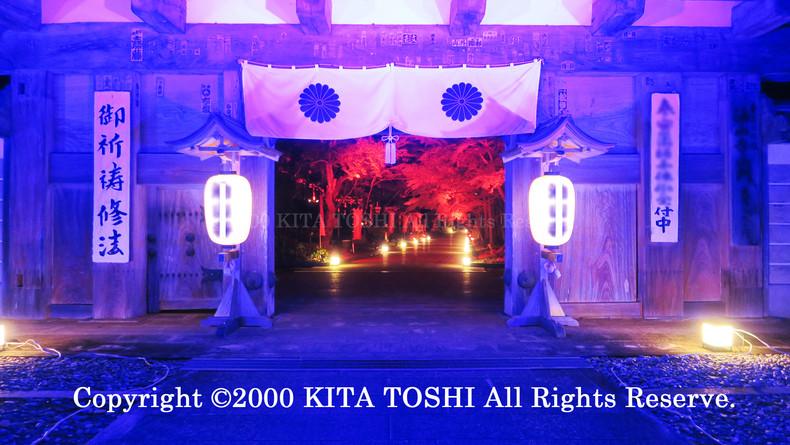 2000_LightupDesigner-Y3_KITATOSHI.jpg