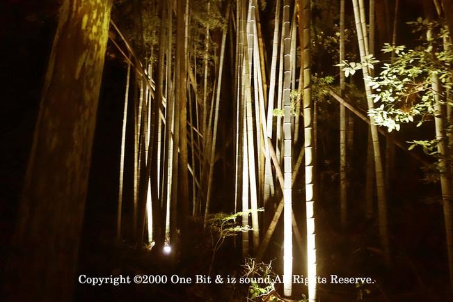 Temple Light-up DesignY15 KITA TOSHI