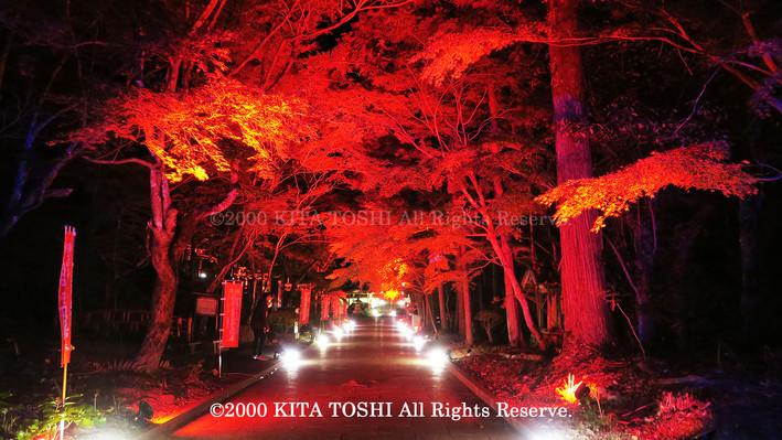 2000_LightupDesigner-Y18_KITATOSHI.jpg