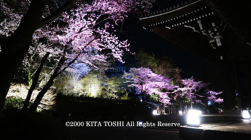 寺院ライトアップデザイナー作品Ci21-35 KITA TOSHI照明デザイナー