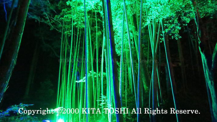 2000_LightupDesigner-Y5_KITATOSHI.jpg
