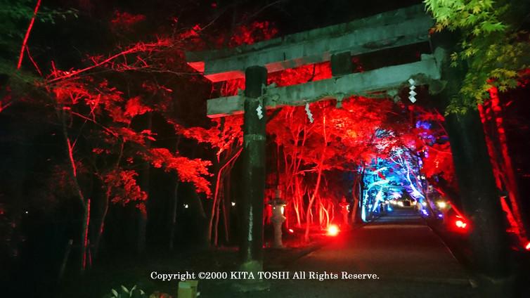 Light-up designer KITA TOSHI's design work (lighting designer)