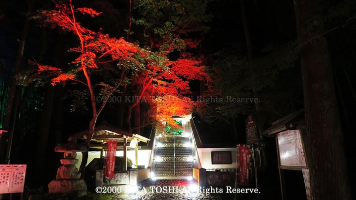 2000_LightupDesigner-Y17_KITATOSHI.jpg
