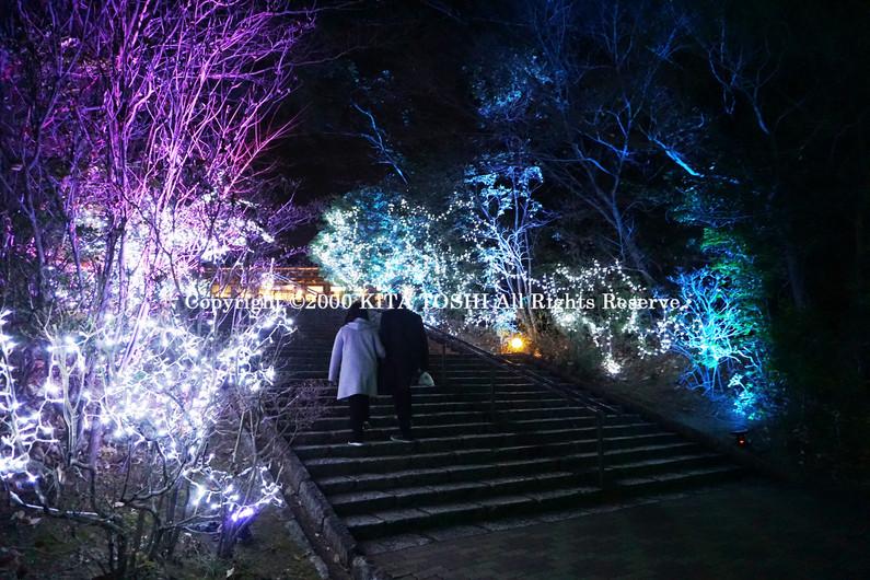 IlluminationsDesigner work MeiJ2 KITA TOSHI