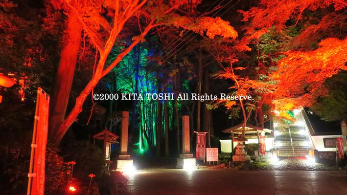 2000_LightupDesigner-Y16_KITATOSHI.jpg