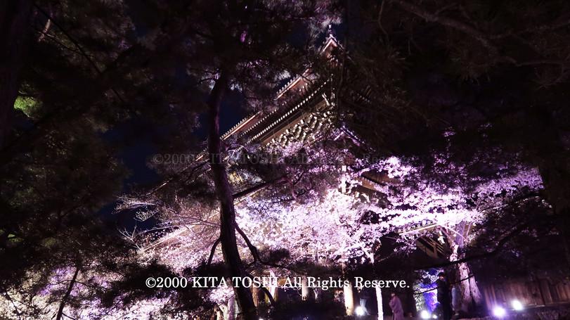 Temple Light-up Designer work Ci21-10 KITA TOSHI