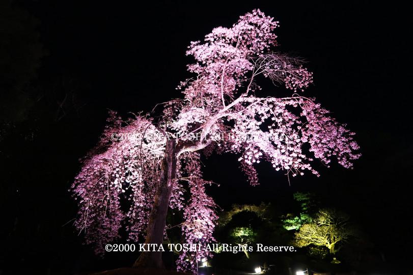寺院ライトアップデザイナー作品Ci21-17 KITA TOSHI照明デザイナー