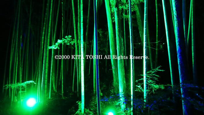 2000_LightupDesigner-Y12_KITATOSHI.jpg