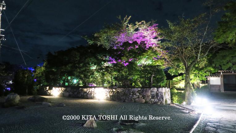 Light-up designer KITA TOSHI's work SzK5