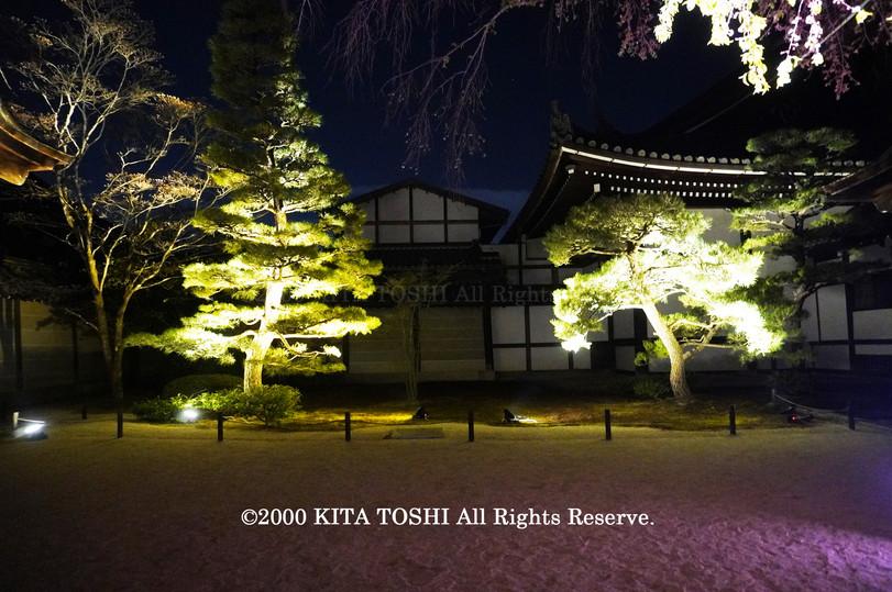 Temple Light-up Designer work Ci21-14 KITA TOSHI