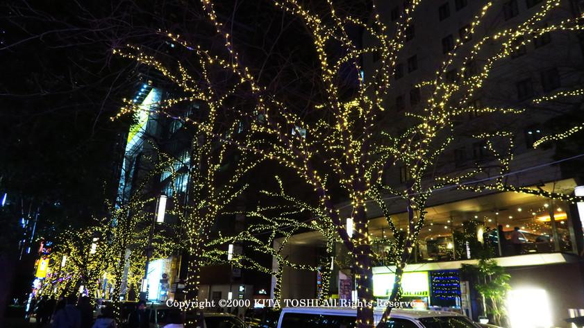 Illuminations designer & light-up designer Kitatoshi * Kitatoshi is a creative lighting designer of Japanese