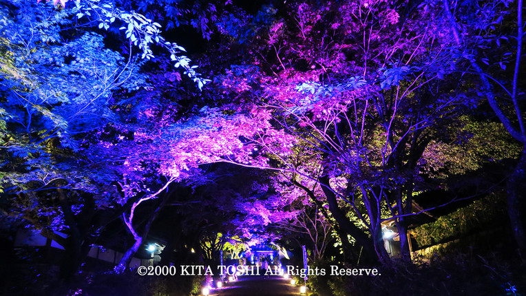 Light-up designer KITA TOSHI's work SzK6