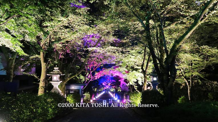 Light-up designer KITA TOSHI's work SzK2