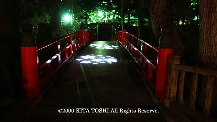 Light-up designer KITA TOSHI's design work Okz-Sakura11 (lighting designer)