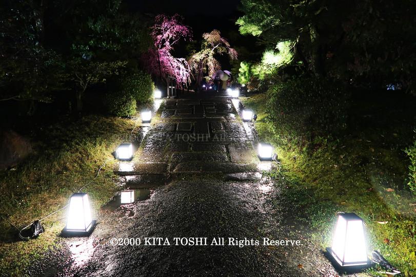 寺院ライトアップデザイナー作品Ci21-23 KITA TOSHI照明デザイナー