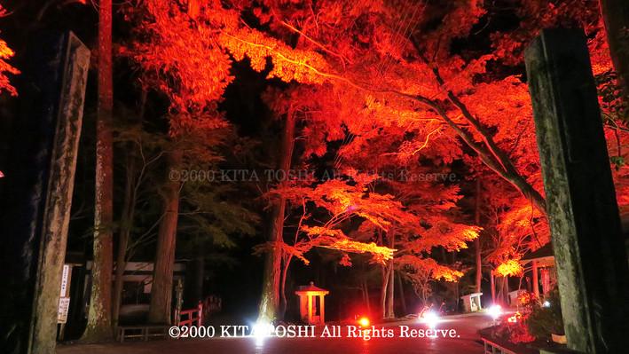 2000_LightupDesigner-Y11_KITATOSHI.jpg
