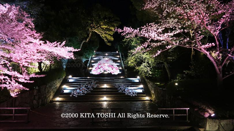 寺院ライトアップデザイナー作品Ci21-29 KITA TOSHI照明デザイナー