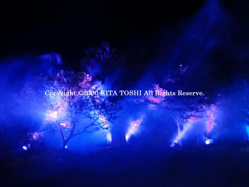 Light-up designer KITA TOSHI's design (lighting designer)