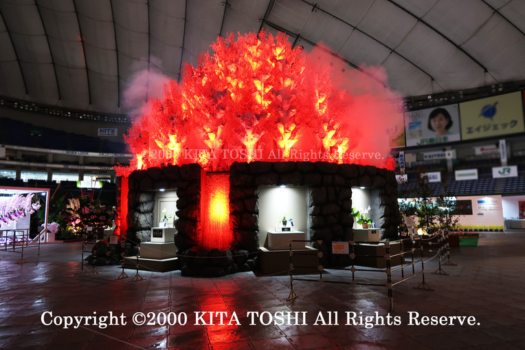 2000_LightupDesign2_KITATOSHI.jpg