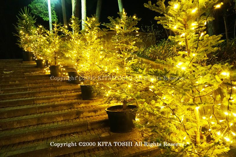 illumination Designer work Ho10 KITATOSH