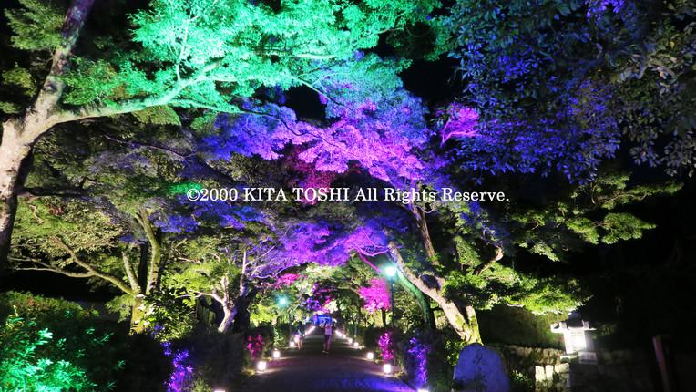 2000_LightupDesignB2_KITATOSHI