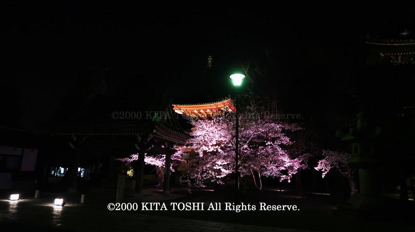 寺院ライトアップデザイナー作品Ci21-27 KITA TOSHI照明デザイナー