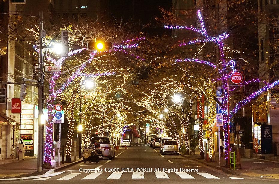 Illuminations designer & light-up designer Kitatoshi * Kitatoshi is a creative designer of Japanese