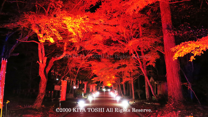 2000_LightupDesigner-Y10_KITATOSHI.jpg
