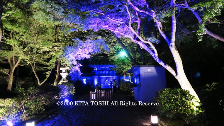 Light-up designer KITA TOSHI's work SzK10