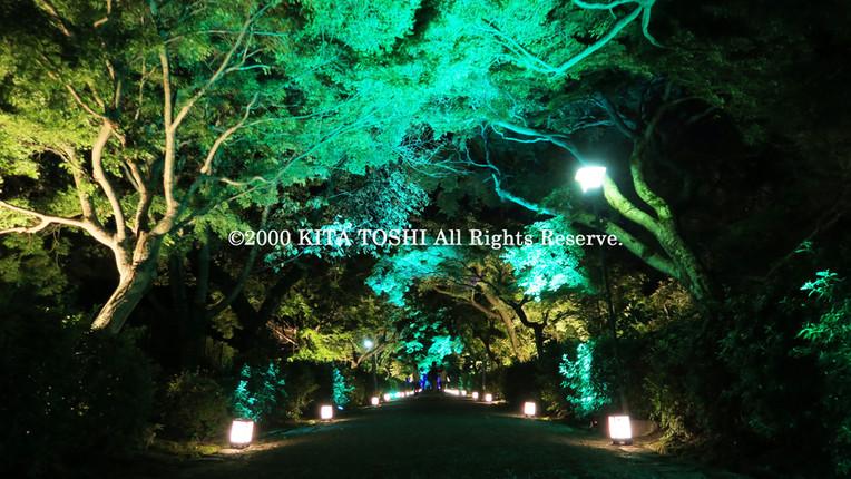 2000_LightupDesignB3_KITATOSHI