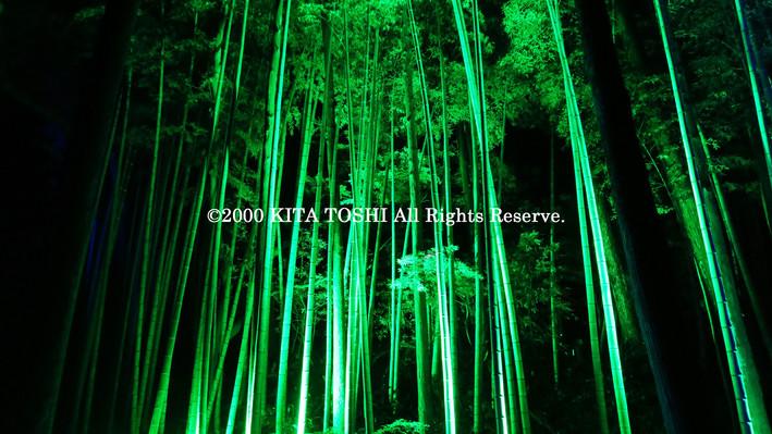 2000_LightupDesigner-Y15_KITATOSHI.jpg
