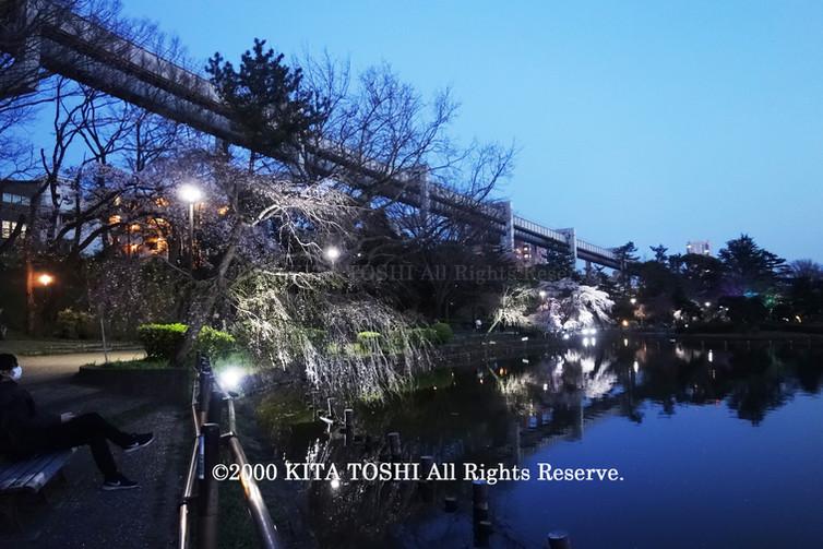 Light-up designer KITA TOSHI's design work ChiB-2 (lighting designer)