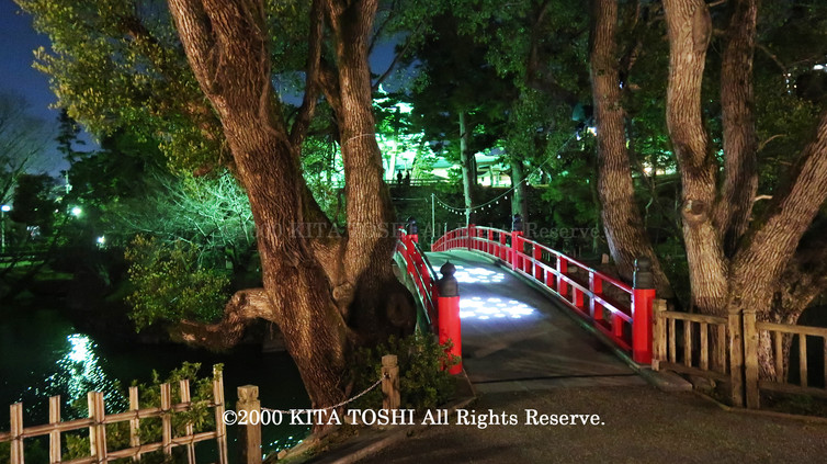 Light-up designer KITA TOSHI's design work Okz-Sakura4 (lighting designer)