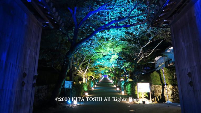 Light-up designer KITA TOSHI's work SzK4