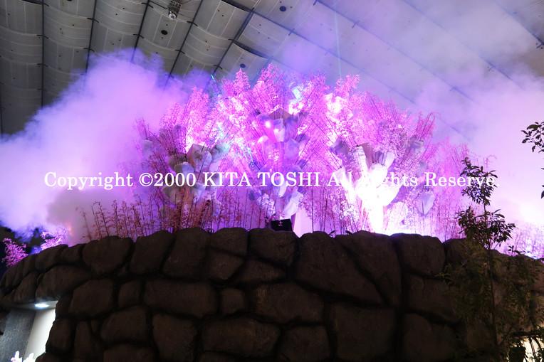 2000_LightupDesign3_KITATOSHI.jpg