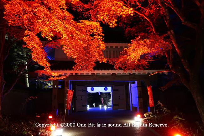 Temple Light-up DesignY8 KITA TOSHI