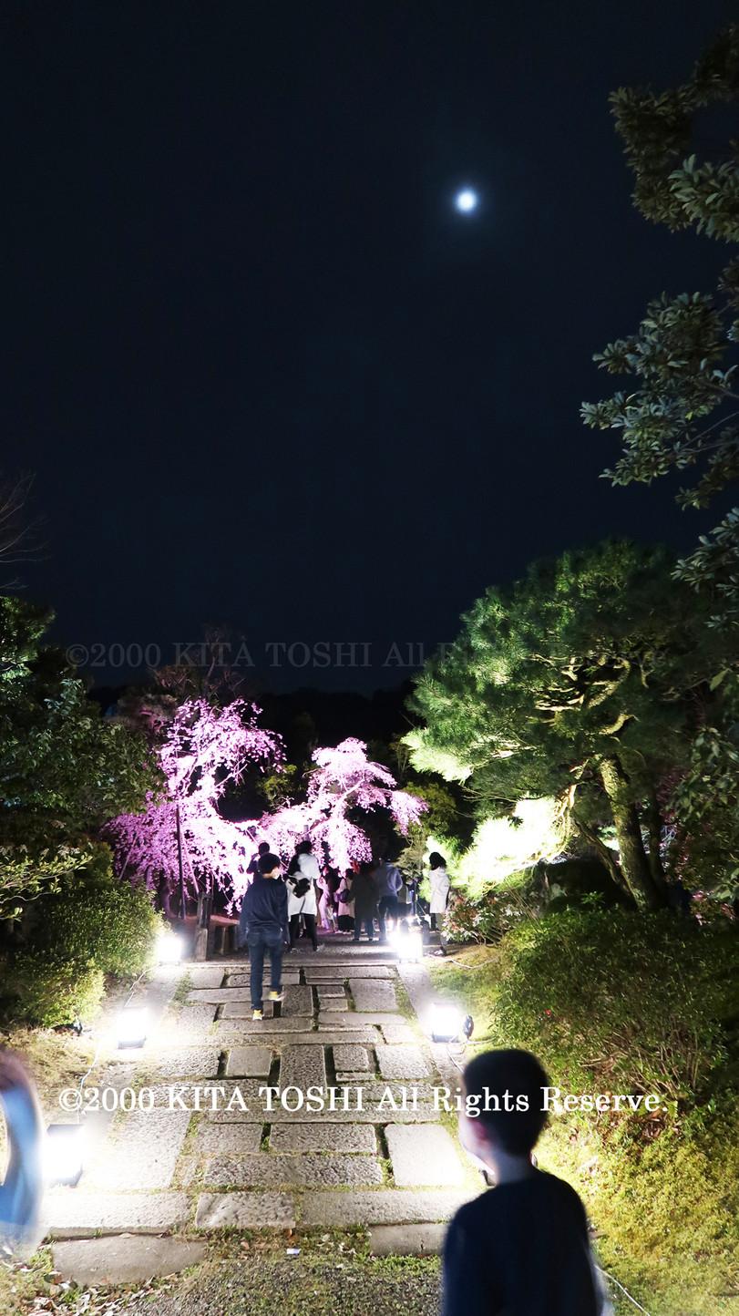 寺院ライトアップデザイナー作品Ci21-37 KITA TOSHI照明デザイナー