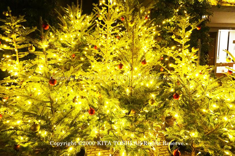 illumination Designer work Ho7 KITATOSHI