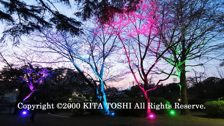 Light-up designer KITA TOSHI's design work ChiB-3 (lighting designer)