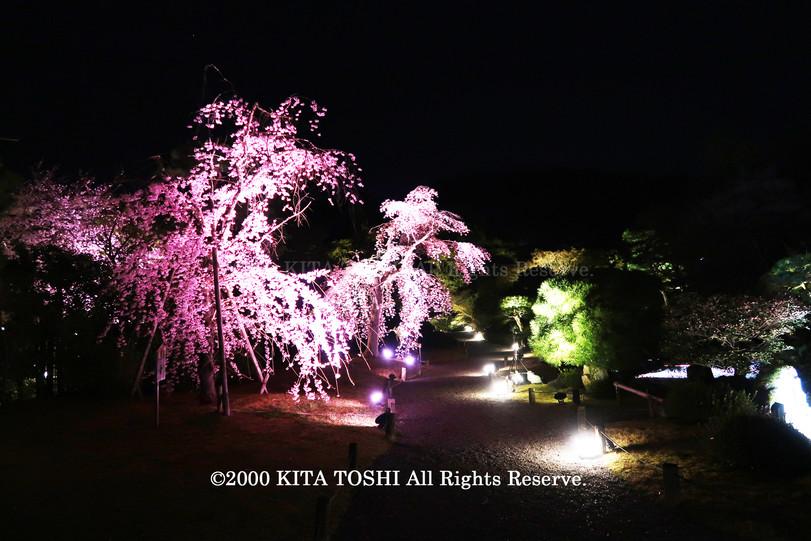 寺院ライトアップデザイナー作品Ci21-20 KITA TOSHI照明デザイナー