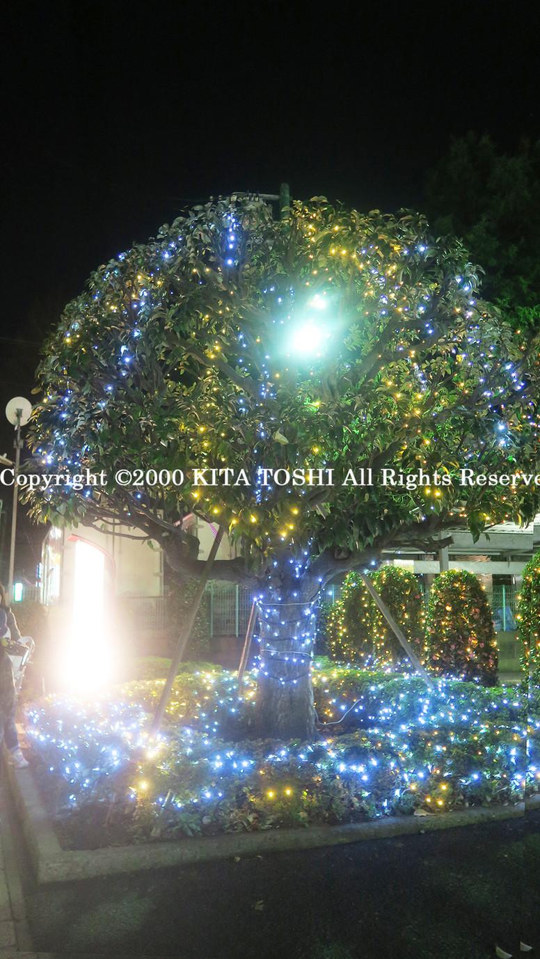 Illumination designer KITA TOSHI design (lighting designer)
