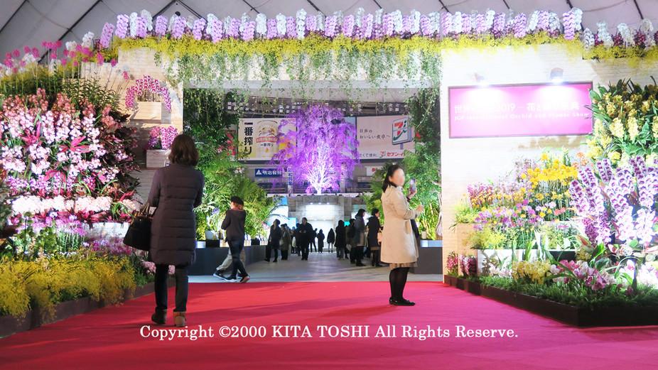 ライトアップ照明デザイナーのKITA TOSHI作品No,19-DoM2