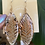 Thumbnail: Redrum fern   Andrenidae